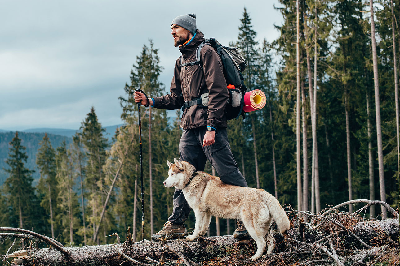 Man backpacking in the woods with his brown husky dog